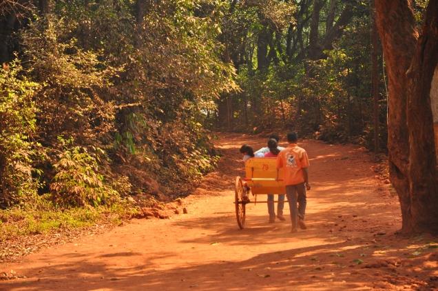 rickshaw forest