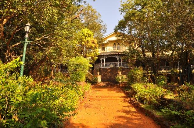 verandah garden